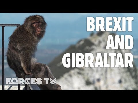 Gibraltar After Brexit: What's The British Overseas Territory's Future? | Forces TV