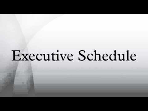 Executive Schedule