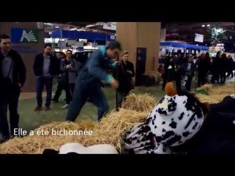Salon de l 39 agriculture 2014 concours du cri du cochon - Salon de l agriculture resultat concours ...