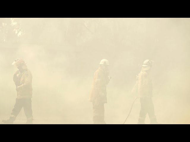 <span class='as_h2'><a href='https://webtv.eklogika.gr/' target='_blank' title='Η Αυστραλία στις φλόγες-Τοξικός καπνός καλύπτει μεγάλες πόλεις…'>Η Αυστραλία στις φλόγες-Τοξικός καπνός καλύπτει μεγάλες πόλεις…</a></span>