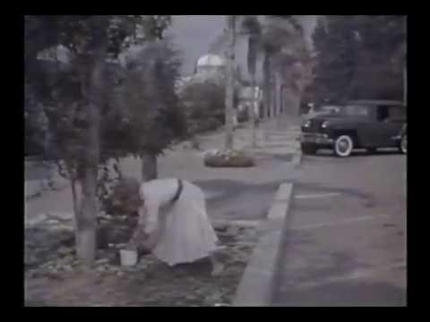 Athena, As Tentações de Adão (1954) Dublagem Antiga Telecine