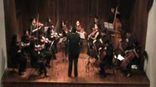 Pequeña Serenata Nocturna - Wolfgang Amadeus Mozart (1756 - 1791)