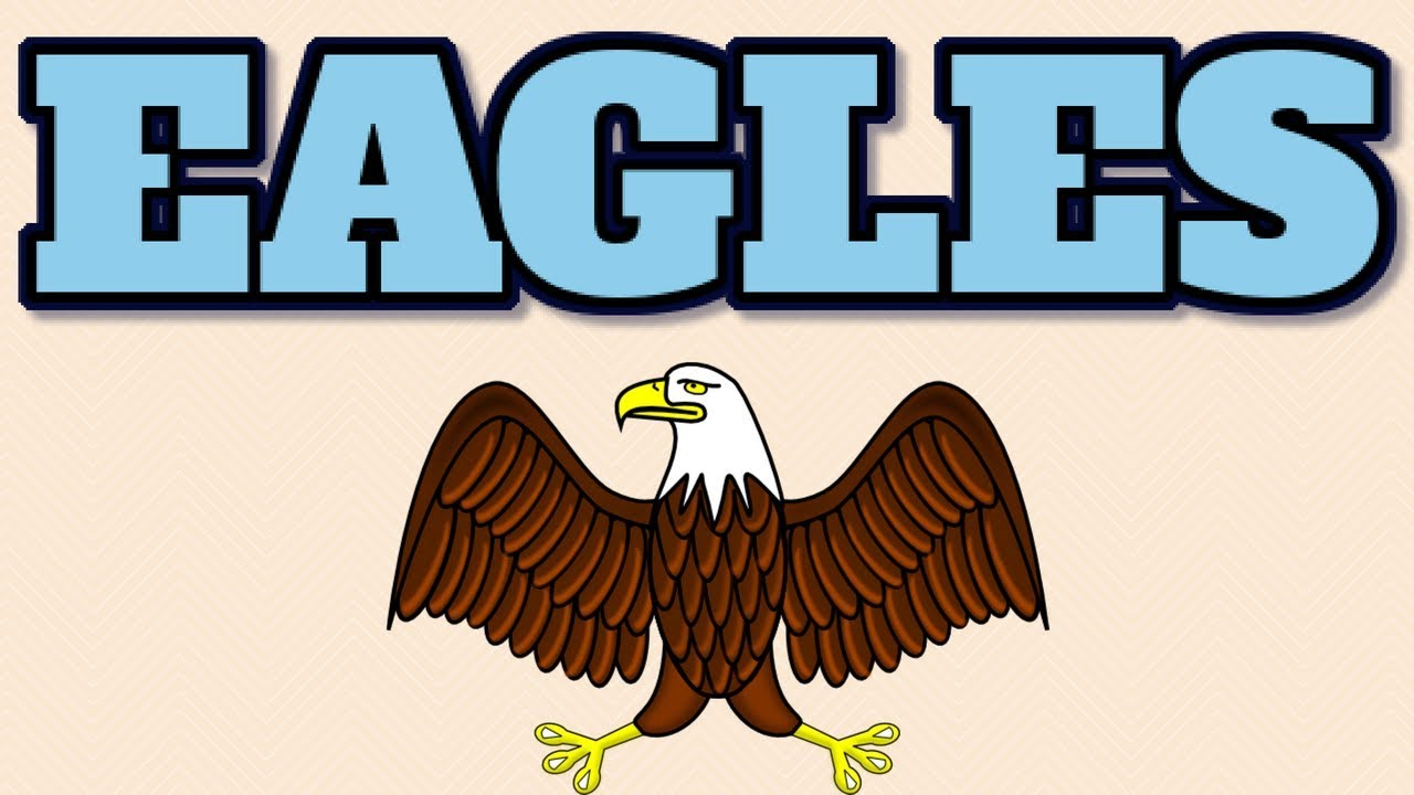 Animal 104 Eagles The Symbol Of Pride In Usa Youtube