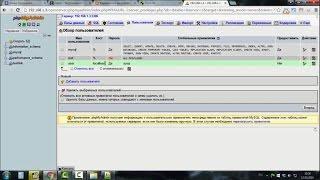 Видео 29. Как создать удаленный доступ к сайту, запущенному на Open Server
