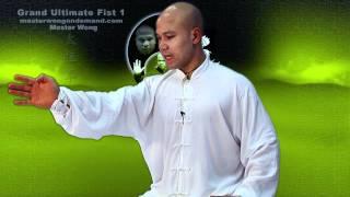 Tai Chi combat tai chi chuan fight style use tai chi - lesson 5