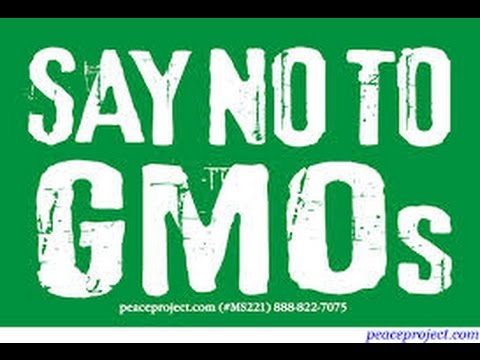GMO info and list of GMOs to Avoid!