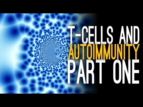 T-Cells and Autoimmunity with Dr. Walsh [Part 1]
