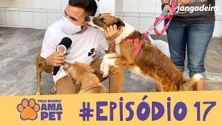 Todo Mundo Ama Pet - EPISÓDIO 17