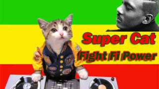 Super Cat- Fight fi Power