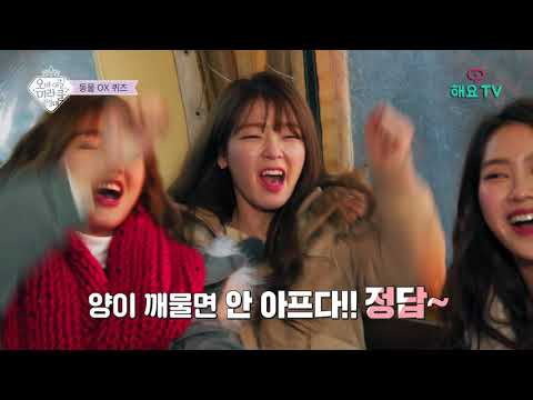 [FULL] EP.6 오마이걸 미라클원정대(OH MY GIRL MIRACLE EXPEDITION)