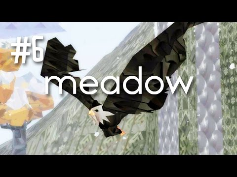 EAGLE - MEADOW (EP.6)