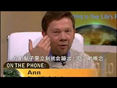 A New Earth Ch 01 of 10 - Eckhart Tolle  with Oprah