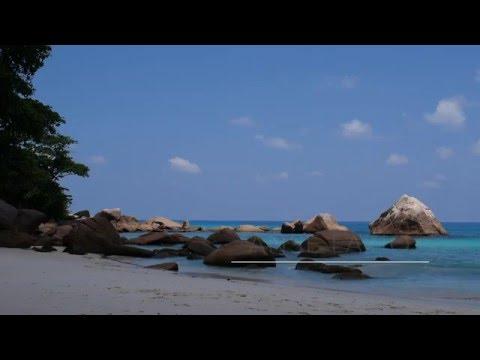 Seychelles' Beach Guide: Anse Lazio