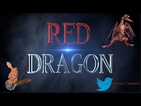 Red Dragon Strain Information / Review
