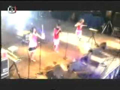 Le Tigre - Nanny Nanny Boo Boo - live Belfort, France 2005