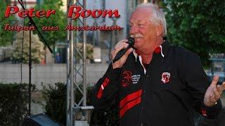 Peter Boom - Tulpen aus Amsterdam / Talentsommer