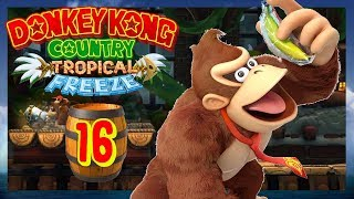 Donkey Kong Country Tropical Freeze #016 | Langsam wirds Iced Out! | ItzReo