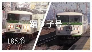 伊豆急下田へ向かう列車達