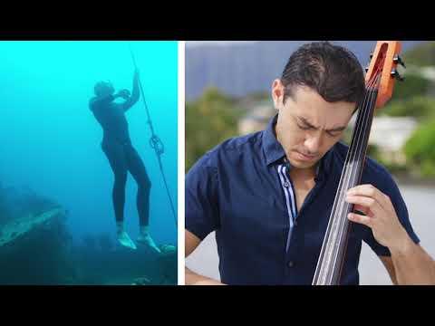 Song of the Birds - Jake Shimabukuro & Joshua Nakazawa