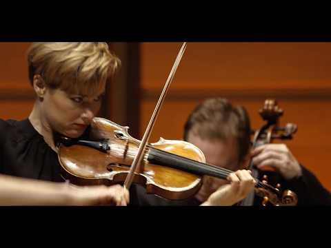 LOCATELLI Violin Concerto in D major The Harmonic Labyrinth | ACO Soloists