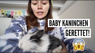 BABY KANINCHEN GERETTET!  13.03-14.03.2018   ✫ANKAT✫