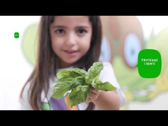 I cinque colori del Gusto e del Benessere - colore arancio verde - video promozionale