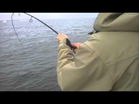 FISHING CHARTER BOAT PORT JEFFERSON 631-974-4933