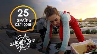 Заробітчани - Израиль - Выпуск 25 - 03.11.2018
