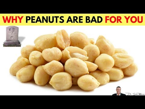 🥜Why Peanuts Are Bad - by Dr Sam Robbins