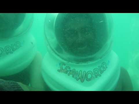 Mount Carmel Business School trip to Thailand(under water video)