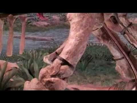 Lufengosaurus Video and Animation [video]   EurekAlert ...