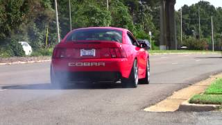 Mustang leaving SVT Cobra Club - Parkway Ford Show 2013 (2 of 3)