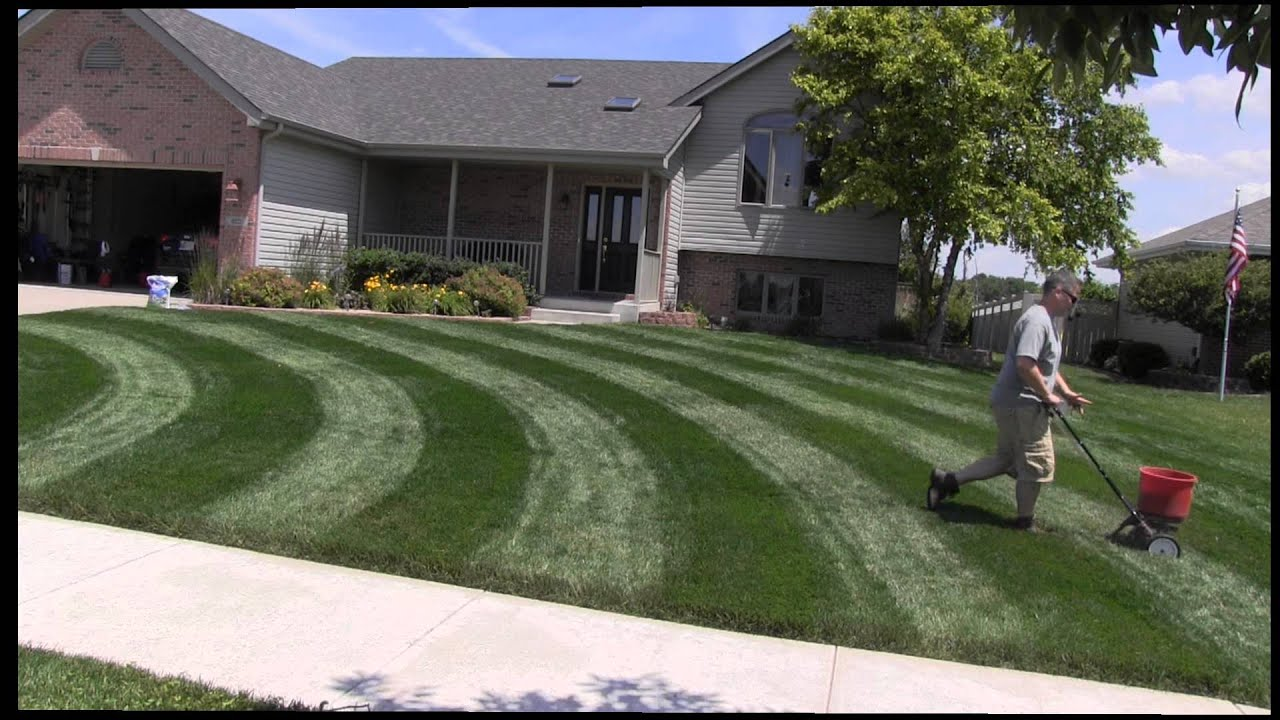 Best Lawn Fertilizer >> Milorganite Fertilizer Application Summer - YouTube
