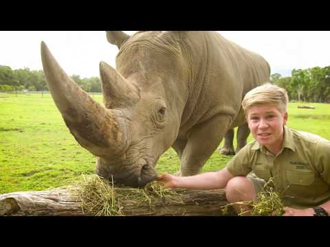 Robert Irwin's Virtual Australia Zoo Tour!