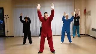 Wu Xing (Five Elements) Qi Gong - 五行 气功 - Master Giuseppe Paterniti Lupo