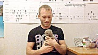 24.02.2013 Актировка котят