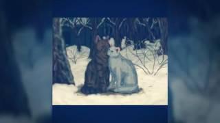 Коты воители :Коршун и Искра(Динамит)