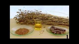 Semilla de linana o lino propiedades beneficios usos . Plantas Medicinales