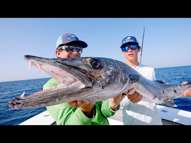 BIGGEST Kingfish Ive EVER Seen while Barracuda Fishing!!