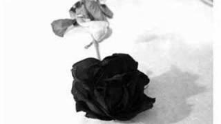 Infernosounds - Land der schwarzen Rosen