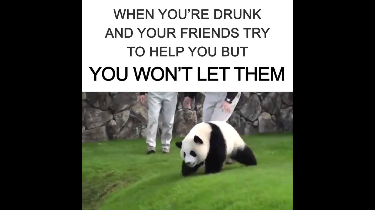 maxresdefault when your friends are drunk and you try to help them youtube