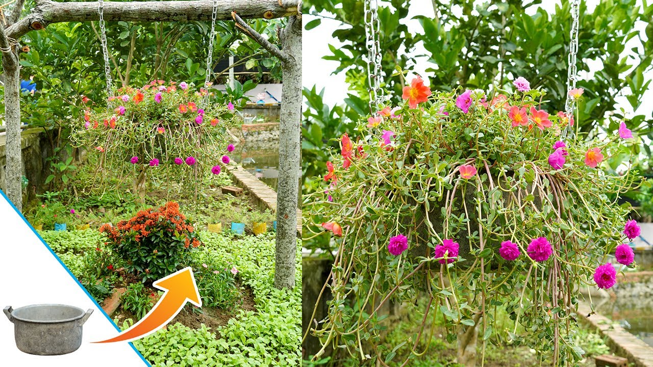 Super lovely hanging garden, Recycling broken Cookware into lovely flower pots