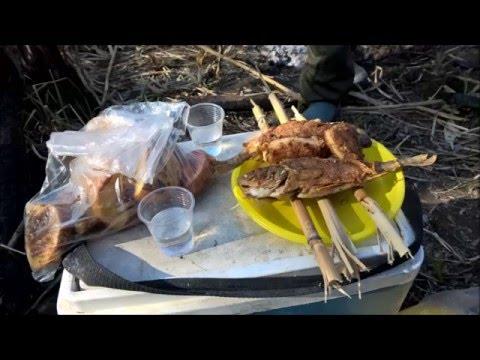 Рыба жареная рецепты На сковороде и в кляре