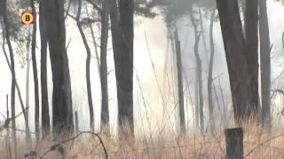 Grote bosbrand Loonse en Drunense Duinen, zeker 30 hectare verwoest