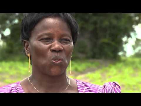 Africa's women green revolutionists
