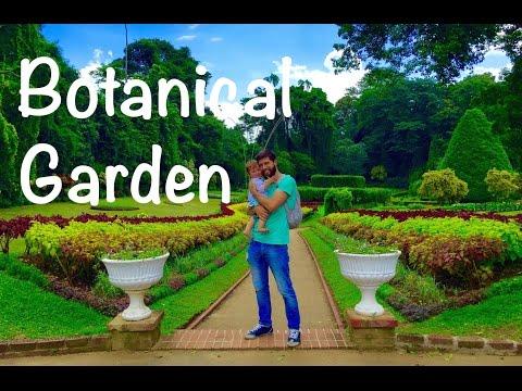 Ein Tag im Traumland | Botanical Garden | Kandy, Sri Lanka #VLOG53