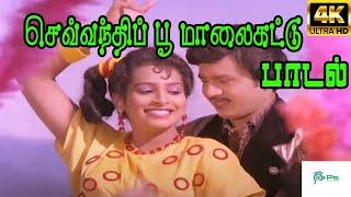 Sevandhipoo Maalakattu   செவ்வந்தி பூ மாலைகட்டு    S. P. B, K. S. Chithra   Love Duet  H D Song