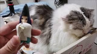 白黒モフモフ猫 VS ヒカルの碁に出てくる幽霊の人