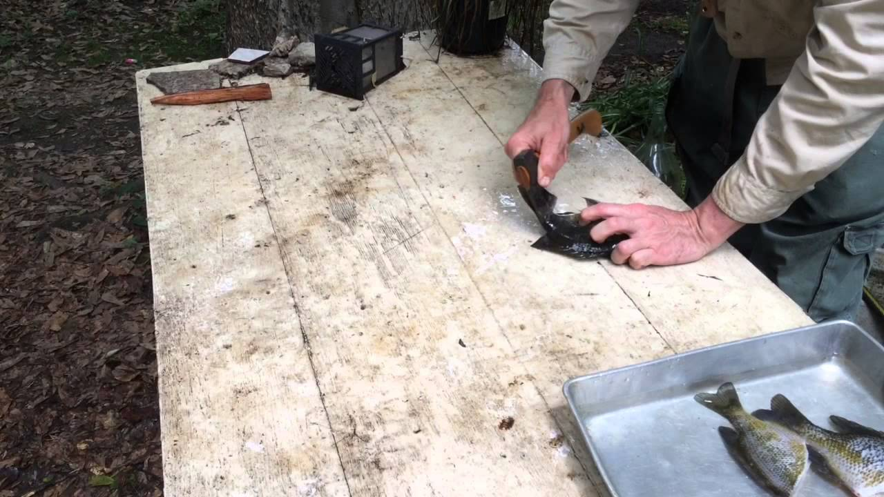 how to clean a hatchet