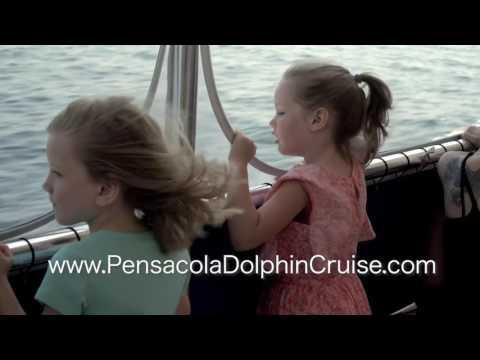 Pensacola's Premier Dolphin Cruise
